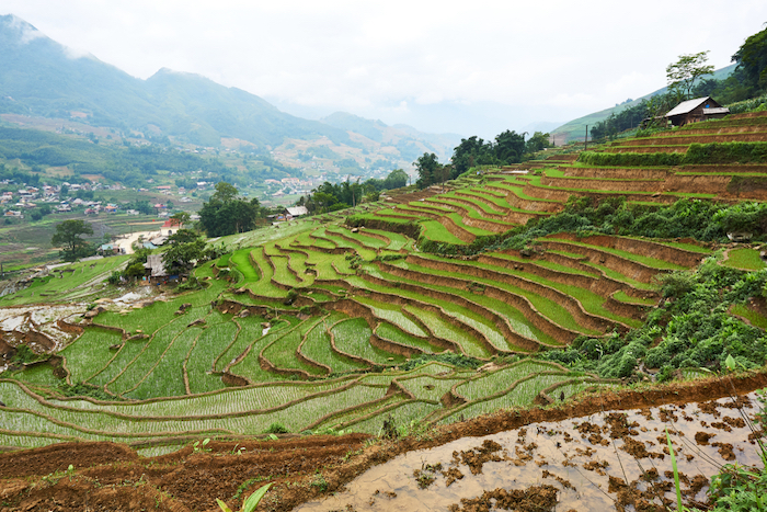 Trekking vietnam sapa bookatrekking.com